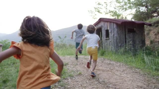 vídeos de stock e filmes b-roll de playful boys and girl running in backyard - jardim particular