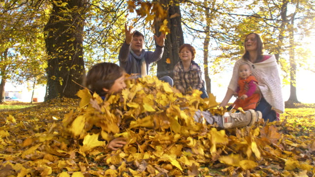 slo mo playful family in autumn park - family with three children stock videos & royalty-free footage