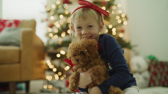 playful girl hiding face behind dog on christmas / vineyard, utah, united states - tied bow stock videos & royalty-free footage
