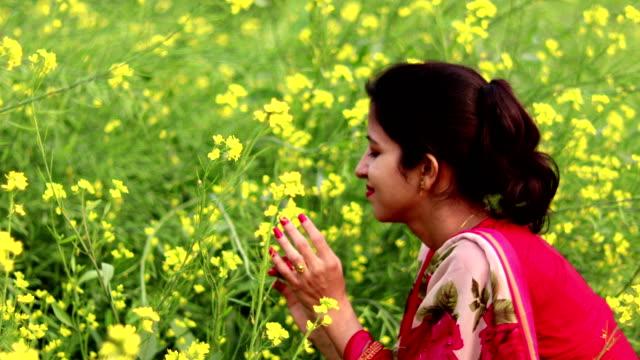 playful girl in mustard field - mustard stock videos and b-roll footage