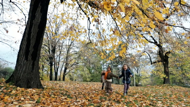 vídeos de stock e filmes b-roll de playful girls having fun in autumn day at the park while holding hands and running. slow motion. - grupo pequeno de pessoas