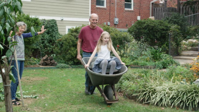playful grandfather pushes granddaughter in wheelbarrow - wheelbarrow stock videos and b-roll footage