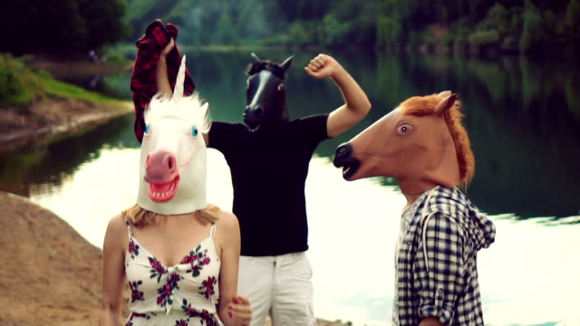 playful horses - animal head stock videos & royalty-free footage