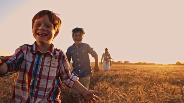 SLO MO Playful kids in the wheat field