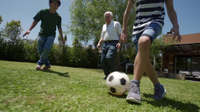 playful latin family playing soccer outdoor - grandfather stock videos & royalty-free footage