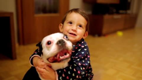 vídeos y material grabado en eventos de stock de jugando fetch con mi cachorro - mascota