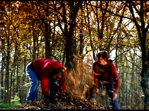stockvideo's en b-roll-footage met playing in leaves - mid volwassen koppel