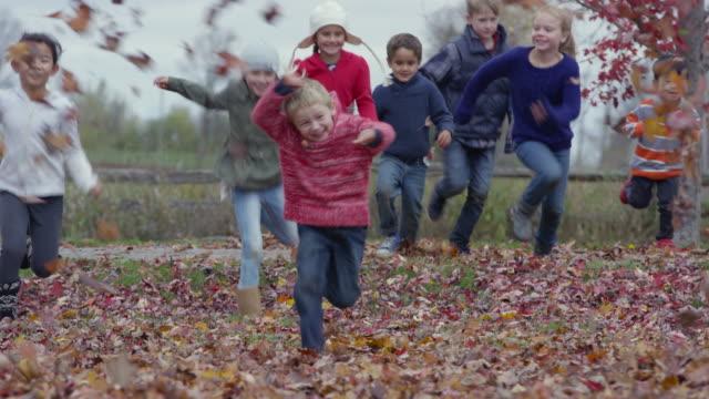 In den Blättern mit Freunden spielen