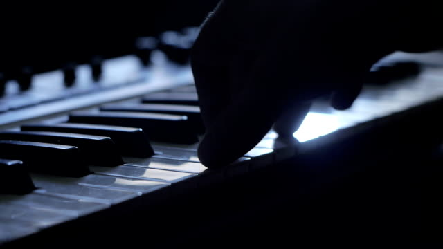 playing piano - male animal stock videos & royalty-free footage