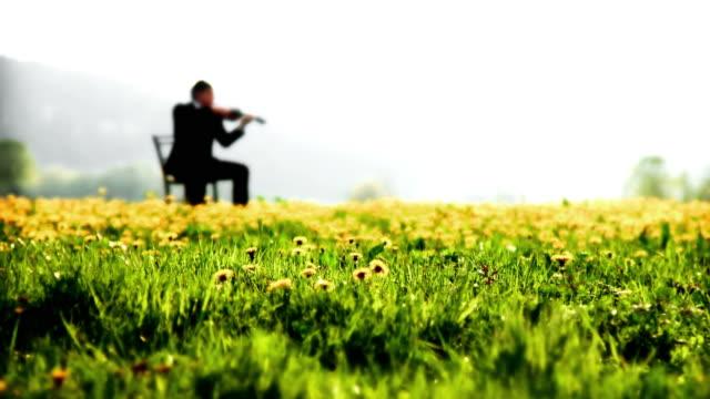 hd :がバイオリンを演奏する屋外 - バイオリン奏者点の映像素材/bロール