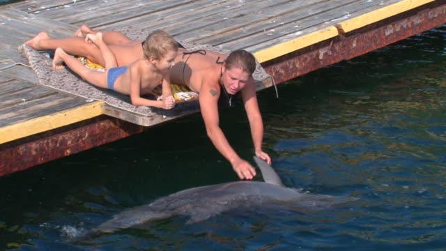 stockvideo's en b-roll-footage met playing with a dolphin - op de buik liggen