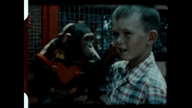 A brother and sister play with a Chimpanzee dressed in clothing.