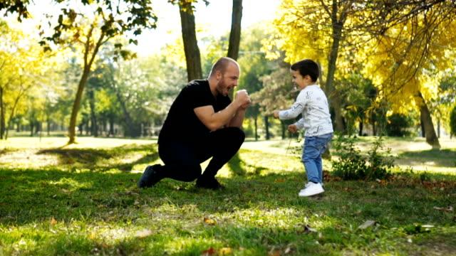 spielen mit papa im park - beifahrersitz oder rücksitz stock-videos und b-roll-filmmaterial
