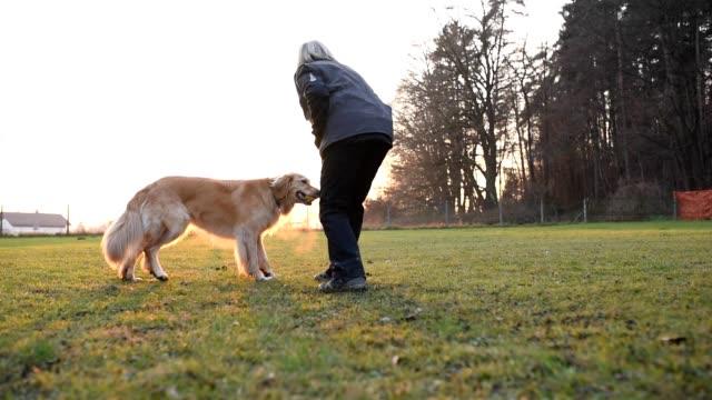 Spielen mit Ihrem Hund