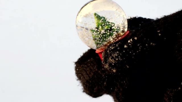 vidéos et rushes de jouant avec boule de neige décorative - secouer