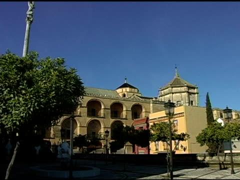 コルドバスペイン広場、メスキートモスクの背景 2 - オレンジの木点の映像素材/bロール