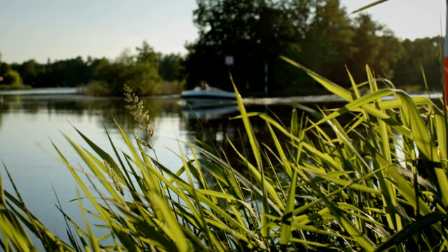 pleasure boats on the oder-spree canal near berlin - brandenburg state stock videos & royalty-free footage