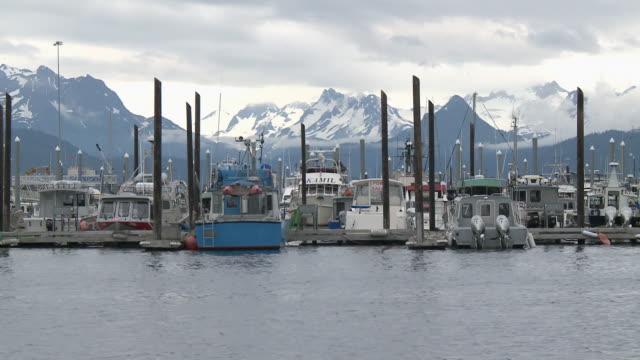 """Pleasure/leisure boats in Homer Boat Harbor, snow capped mountains of Kachemak Bay State Park and Wilderness Park in background, Homer Spit, Homer, Kenai Peninsula, Alaska."""