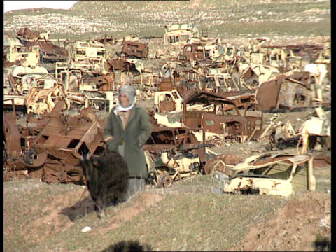 plight of the kurds iraq kurdistan sulaymaniyah gv mountains fade to women along carrying sticks on their heads for fuel ms children standing on... - kurdischer abstammung stock-videos und b-roll-filmmaterial
