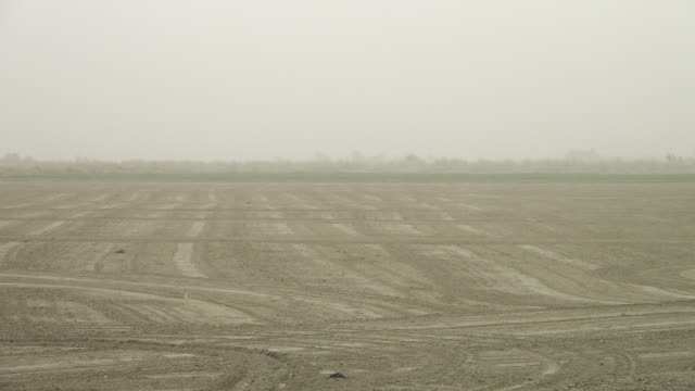 ploughed farmland with low visibility - terra brulla video stock e b–roll