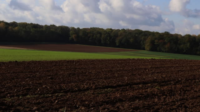 plowed field and countryside landscape - île de france stock-videos und b-roll-filmmaterial