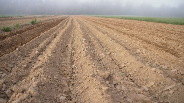 ds plowed field in the fog - plowed field stock videos and b-roll footage