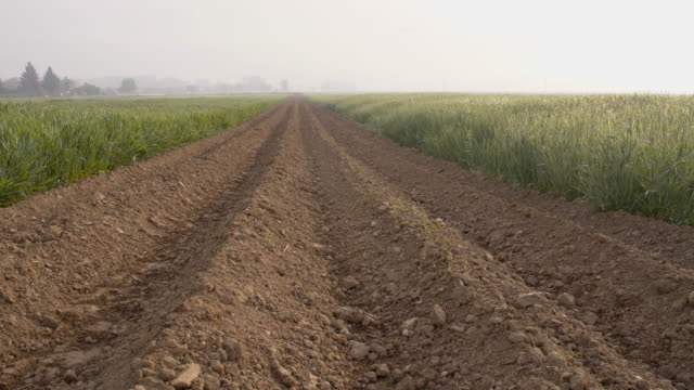 ds plowed field - plowed field stock videos and b-roll footage