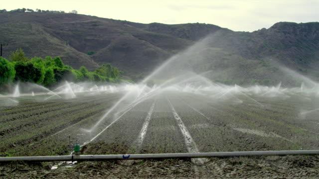 ws plowed field with sprinklers, santa rosa valley, california, usa - attrezzatura per l'irrigazione video stock e b–roll