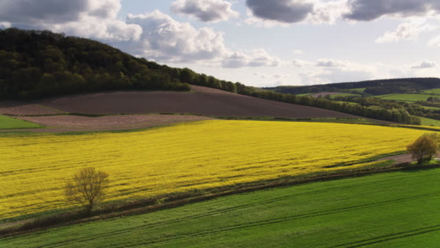 Plowed Fields and Rapeseed in West Sussex, England - Drone Shot