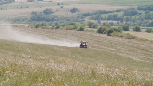 plowing an agricultural field. tractor working at the oilseed rape field at the end of the harvest season plowing the soil. agricultural occupation. - agricultural occupation stock videos & royalty-free footage