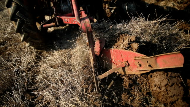 vídeos de stock e filmes b-roll de plowing close up.senior man driving small tractor and plowing field.agricultural activity - lavrar