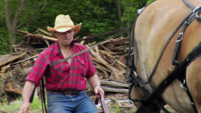 stockvideo's en b-roll-footage met ms ts zi zo  plowing scene with farmer and two horses, neenah, wisconsin, usa - alleen één seniore man