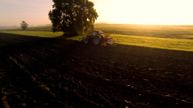 hd: plowing the field at sunset - traktor bildbanksvideor och videomaterial från bakom kulisserna