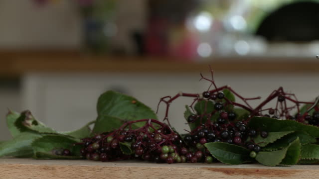 plucked elderberries and jar of jelly - 2013 stock videos & royalty-free footage