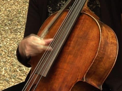 Plucking ein Cello