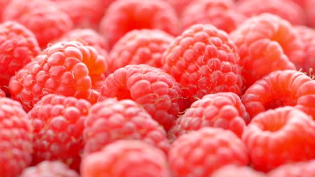 vídeos y material grabado en eventos de stock de maduro rojo grande y frambuesas, primer plano - frutas del bosque