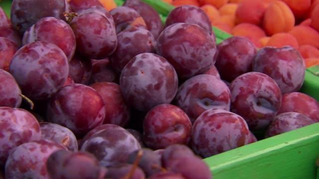 plums - plum stock videos & royalty-free footage