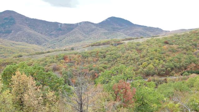 plush vegetation and crimean mountains. autumn colors in crimea - earth goddess stock videos & royalty-free footage
