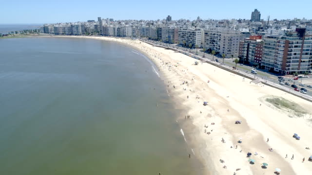 pocitos beach, aerial view, drone point of view, montevideo, uruguay - モンテビデオ点の映像素材/bロール