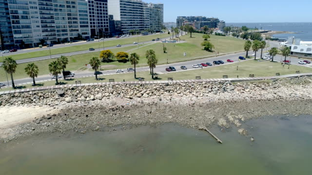 pocitos beach, aerial view, drone point of view, slow motion, montevideo, uruguay - rio de la plata stock videos & royalty-free footage