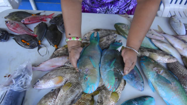 Pohnpei Micronesia close up of fresh fish for sale in capital downtown Kolonia