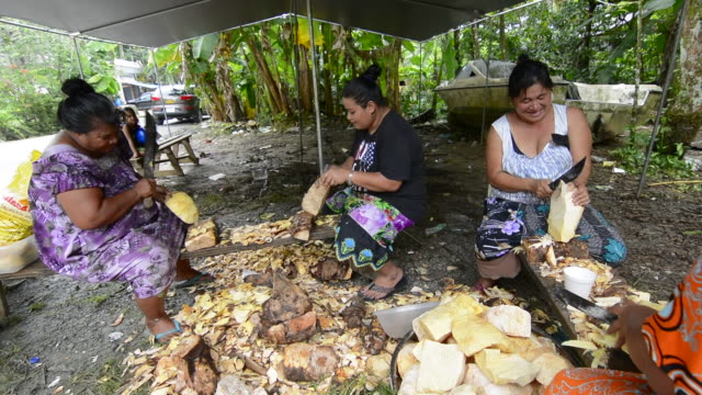 pohnpei micronesia women cutting taro root with knives in outdoor kitchen for selling - micronesia stock videos & royalty-free footage
