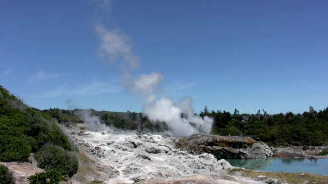 pohutu geyser - whakarewarewa stock videos and b-roll footage