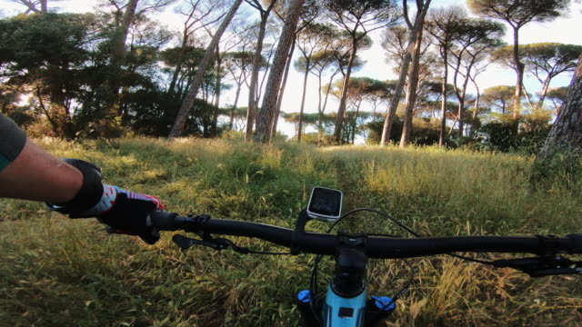 pov point of view action cam: riding a mountainbike bicycle - bicycle trail outdoor sports stock videos & royalty-free footage