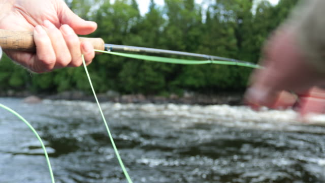 point of view fisherman fly fishing in river - salmon animal stock videos & royalty-free footage