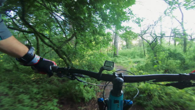 point of view pov mountain bike fast ride in the forest - mountain bike video stock e b–roll