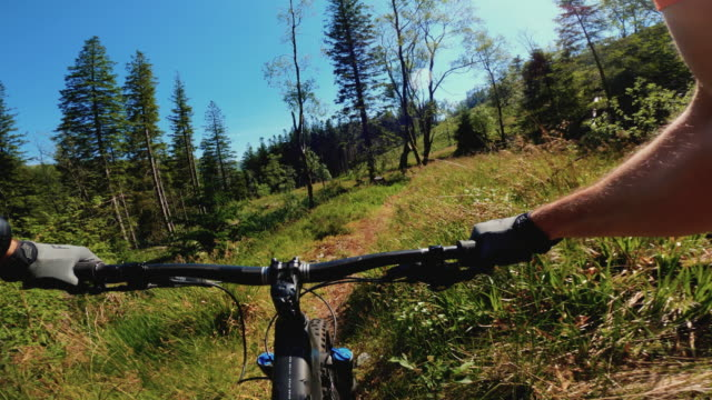 point of view pov mountainbike fast ride in the forest of norway - riding stock videos & royalty-free footage