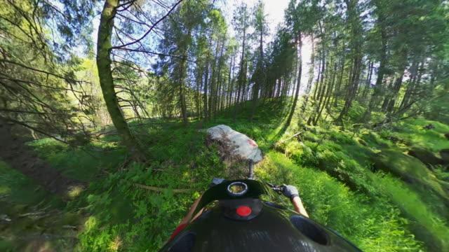 ノルウェーの森でのpovマウンテンバイクの高速乗車の視点 - サイクリングロード点の映像素材/bロール