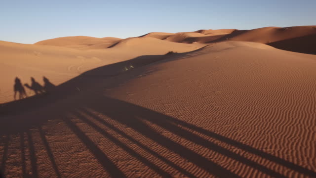 vídeos de stock e filmes b-roll de point of view of a ride of camel in sand dunes in the desert - marrocos