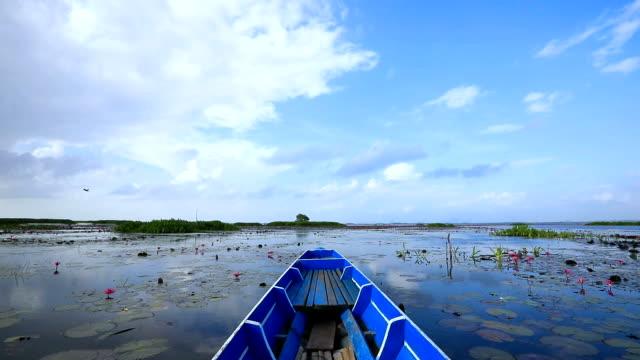 point of view of longtail boat cruising on stunning lake in ban pak pra -talay noi lake, phatthalung, thailand. - wilderness stock videos & royalty-free footage